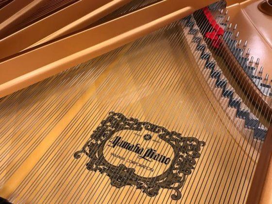 proporzioni delle corde del pianoforte